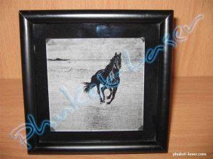 Acrylic / Grass Laser Engraving