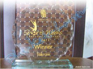 Acrylic Award A28