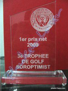 Acrylic Award A17